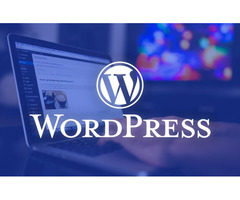 The best WordPress hosting understands your business needs